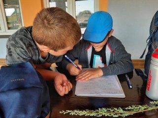 Podzimní vycházka na téma :Stromy, keře a byliny (3.třída)